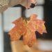 Leaf Dipping